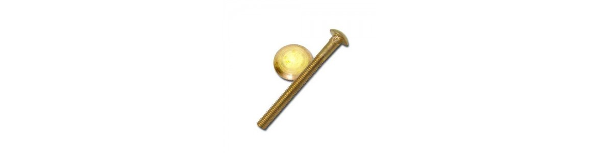Bronze Carriage Bolts